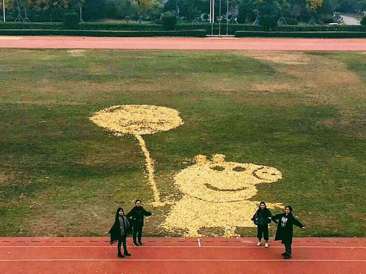 大学校园落英缤纷 学生打造创意拼图