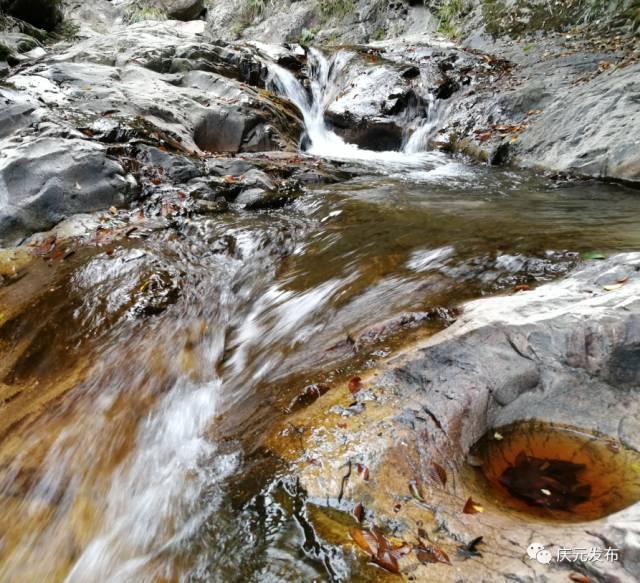 寻找庆元最美风景|荷地金龟峡谷
