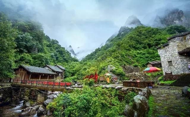 """药王山风景区被誉为""""江南神农架""""."""