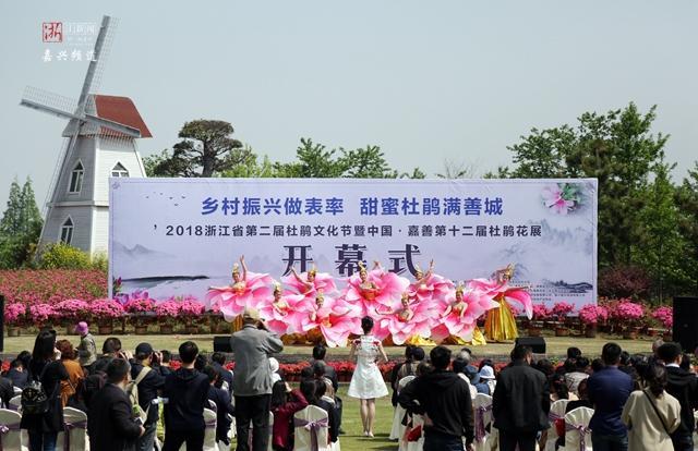 文化节暨中国嘉善第十二届杜鹃花展开幕式在嘉善县碧云花海农场举行