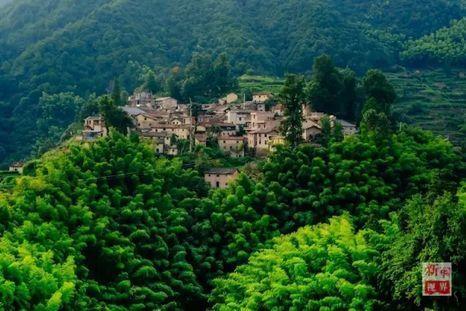 西坑村位于浙江西南部的松阳县.