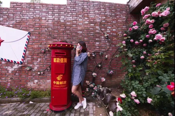 玫瑰长廊,玫瑰花墙,玫瑰木屋.