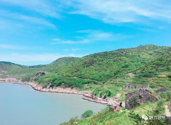 海岛游|台州这个小众岛屿 狗狗当导游 山羊黑猪满山跑