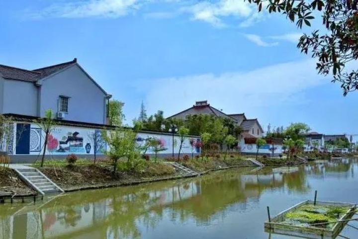 推进农村人居环境提升 嘉兴构建美丽宜居乡村新格局