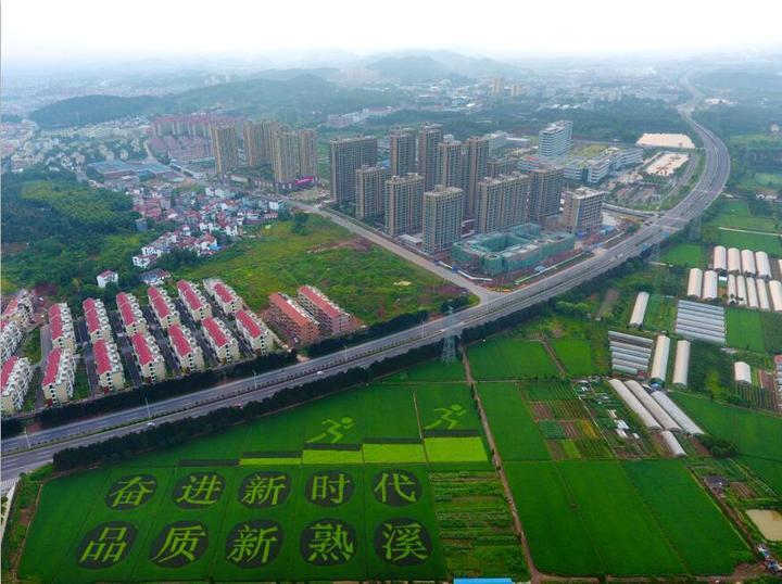 武义:农民种风景 扮美新农村-浙江在线金华频道