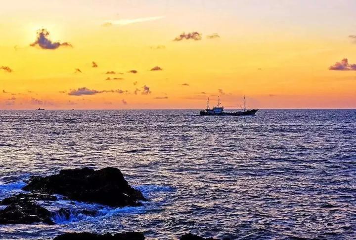 鹿西岛东北部有闻名遐迩的鸟岛,每年农历5-6月,一上鹿西岛就能看到万