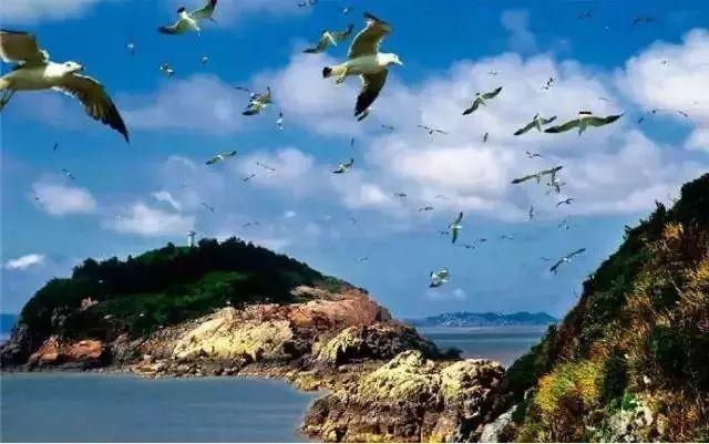 到了鹿西岛,黄鱼,南美白对虾,水潺饼是必尝的美食.