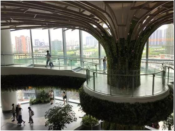 杭州首座大悦城开门接客!