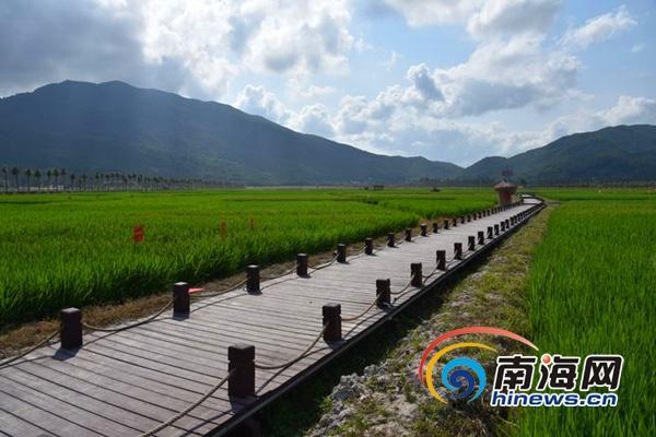 海南三亚农业示范基地