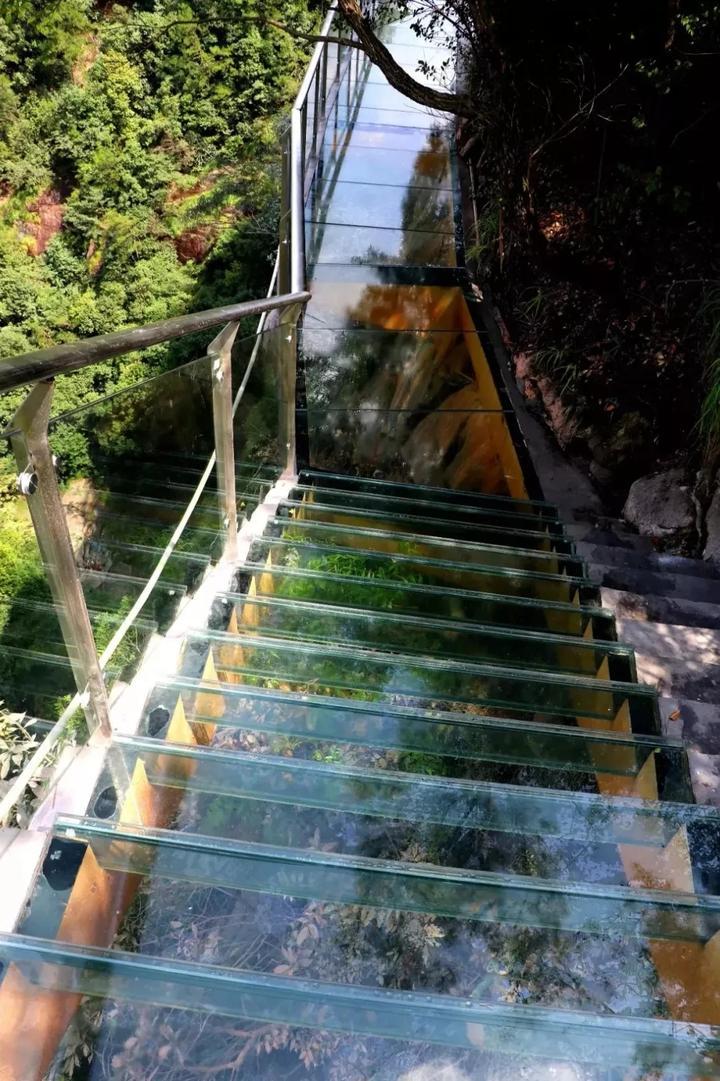 8 与玻璃栈道平行的5d观瀑玻璃索桥——飞龙桥(目前正在建设中),设计