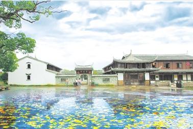 台州农村 风景