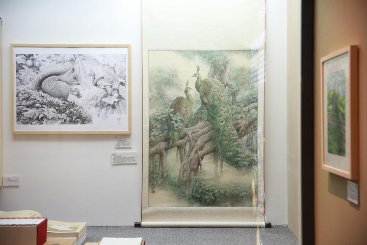 而从绘画题材的角度来看更是多种多样,例如植物画,动物画,古生物复原