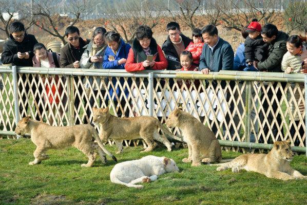 长兴:动物园里看萌宠 其乐融融过大年