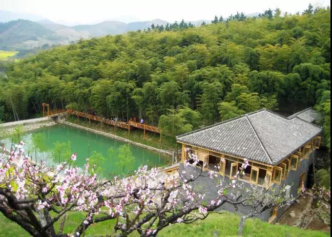茶馆一派小桥流水人家的江南风味,二楼更有一个小型会议室,环境安静