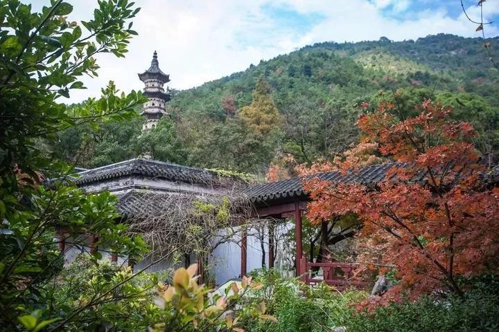 穿越黄岩 | 嬉戏在东城,九峰公园,东禅酒厂,老扁酒家