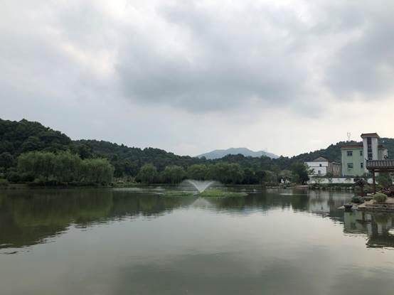 萧山区浦阳镇灵山村