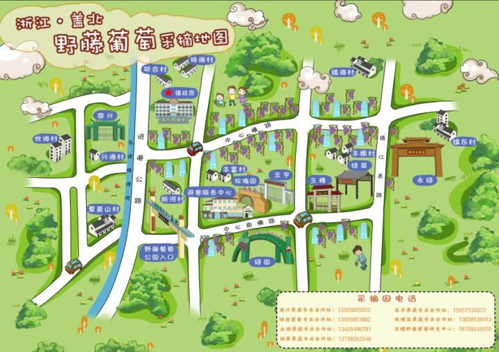 68种葡萄甜蜜120天手绘采摘地图带你尝遍 盖北野藤葡萄文化旅游节今启