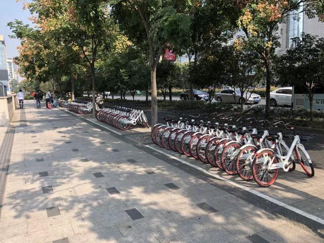 圈住乱停乱放共享单车 杭州延安路启用