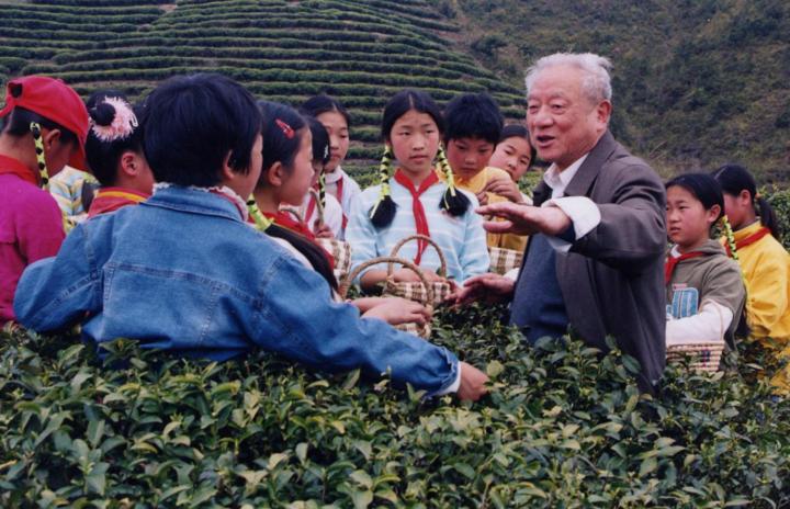 茶歌带来乡村新蝶变--采茶舞曲暨泰顺茶文化活动启幕
