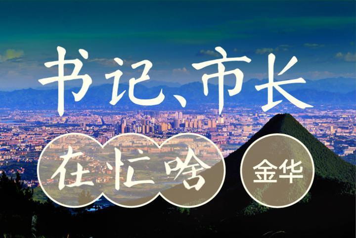 陈龙:聚焦金义一体化全域同城化推进项目化努力走出一条都市能级...