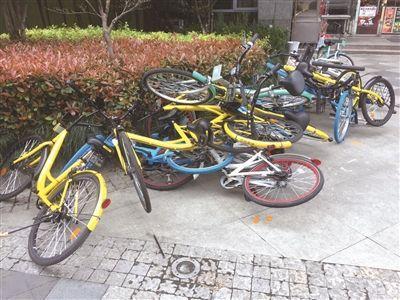 共享单车停放乱象如何解决? 可建设单车地下立体车库