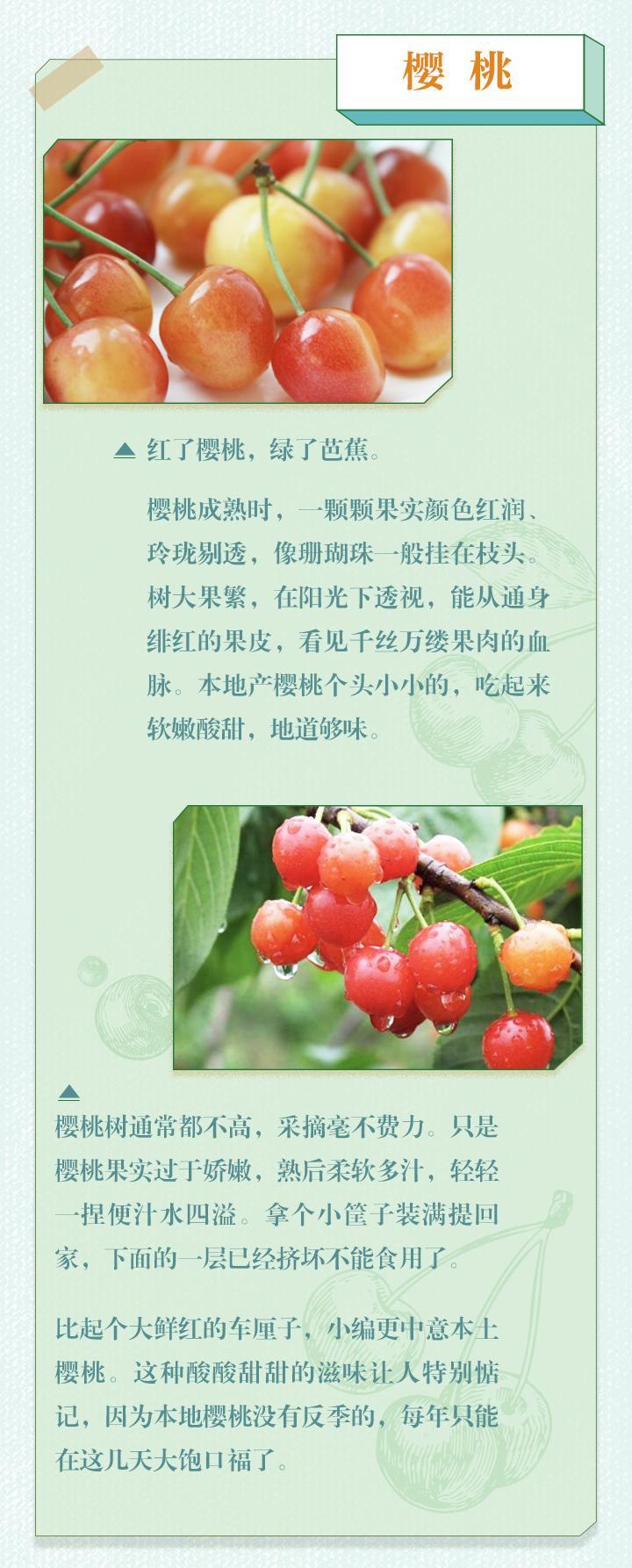 吴宜盈图片_好味知时节丨雨生百谷暮春至 桑葚樱桃正当时