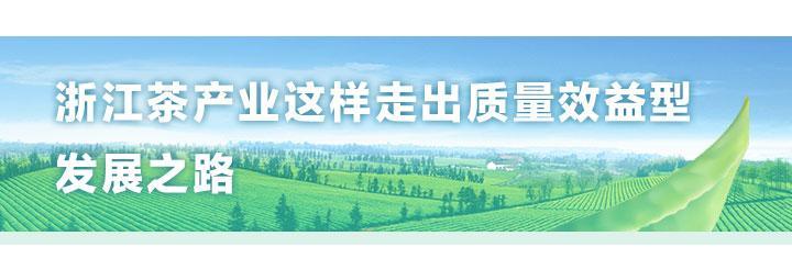 第三届茶博会_08.jpg
