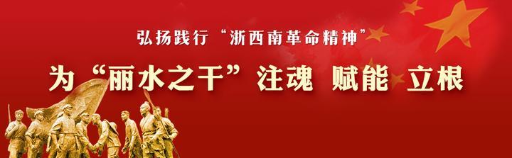 """主发布人胡海峰 发布""""浙西南革命精神""""研究成果"""