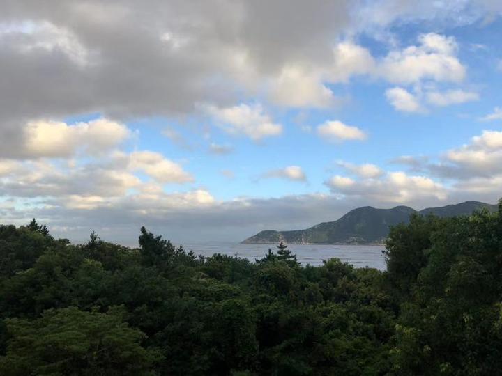 台风8.jpeg