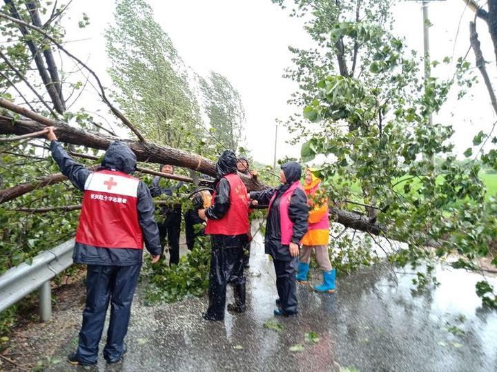 虹星桥镇里塘村红十字服务站积极参与险情处置,将树木锯断拉走,疏通道路。.jpg