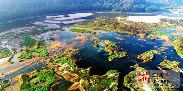 湿地公园秋景美1.jpg