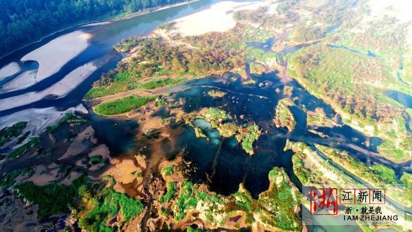 湿地公园秋景美3.jpg
