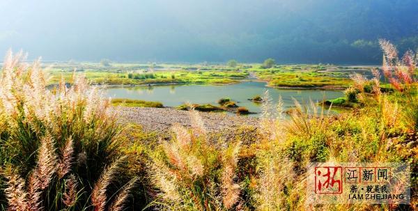 湿地公园秋景美5.jpg
