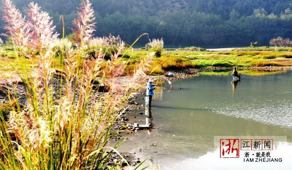 湿地公园秋景美6.jpg
