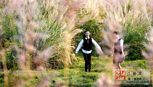 湿地公园秋景美8.jpg