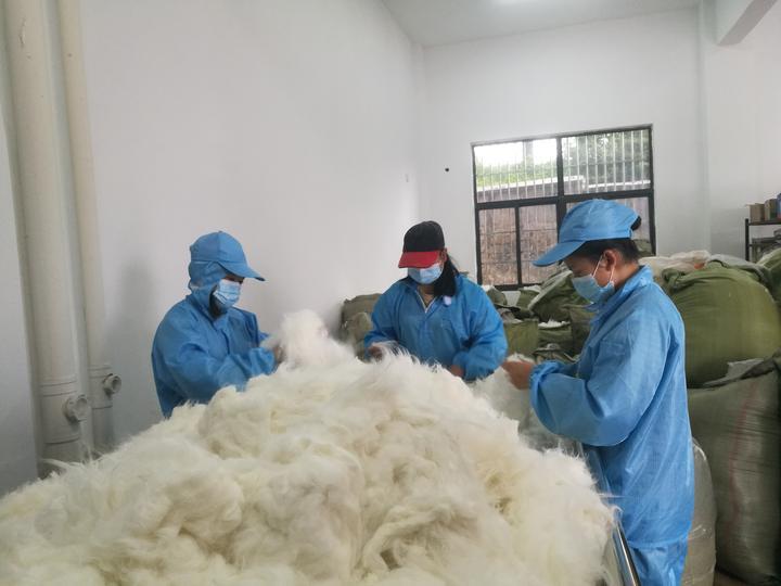 长毛兔产业成为普安贫困农户脱贫致富好产业.jpg