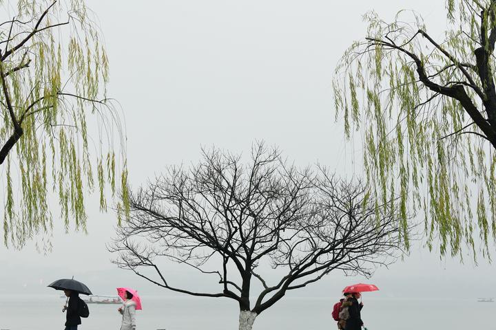 杭城将在雨中跨年(里尔摄影)6.jpg