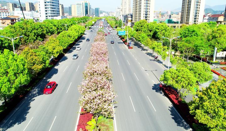 美丽公路满目春4.jpg