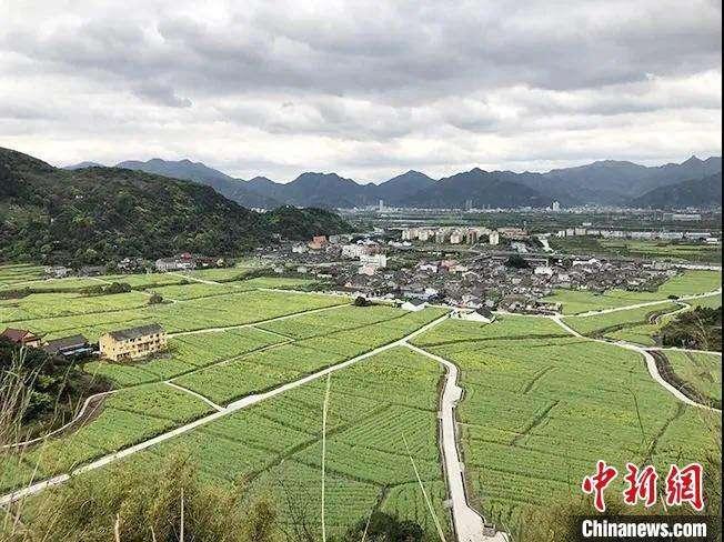 构建具有浙江创新特色的国土空间...