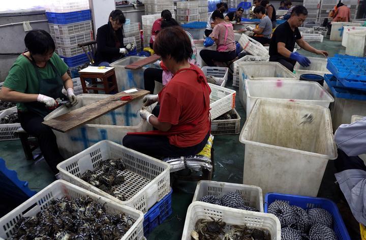9月14日,在常州金坛区水产品电子商务中心的一处分拣包装仓库内,工人们正在捆扎大闸蟹。.jpg