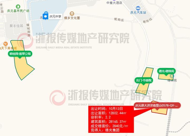 庆元县大济洋省里山0578-QY-01-01-28地块.jpg