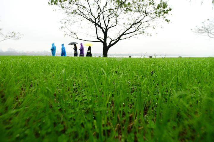 西湖白堤返春(里尔摄影)4.jpg