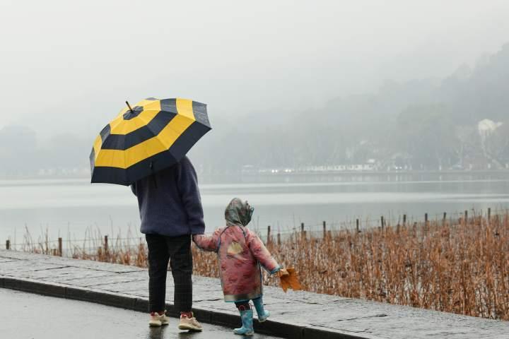 晴久杭城雨水如甘霖(里尔摄影)1.jpg