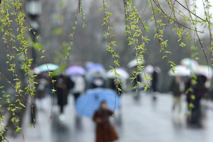 春雨潇潇西湖情(里尔摄影)3.jpg