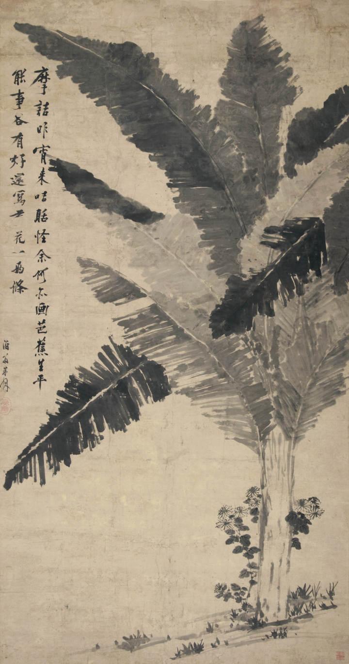 朱因 蕉菊图轴.jpg