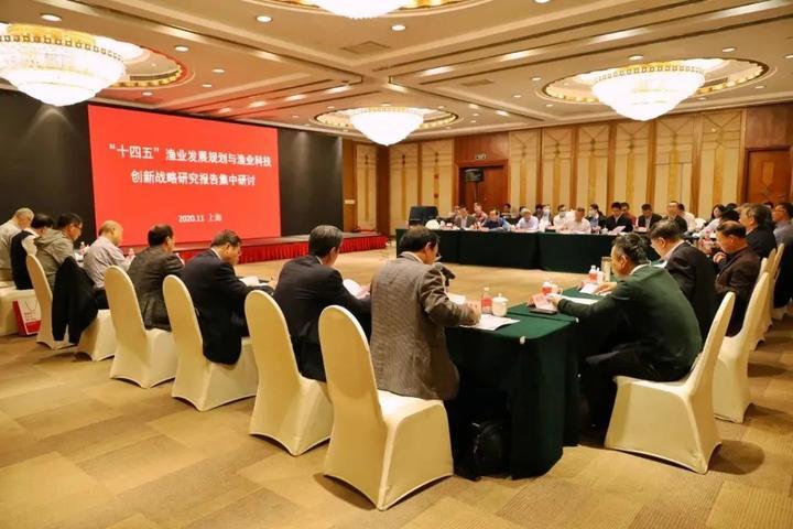 """院士专家为""""十四五""""渔业发展建言献策——""""十四五""""渔业发展集中研讨在上海举行"""